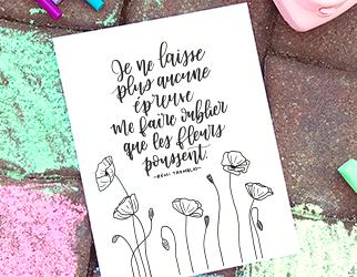 Coloriage – Les fleurs poussent